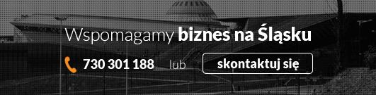 Wspomaganie biznesu na Śląsku